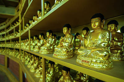Buddha Collection Underneath The Golden Poster by Michael Runkel