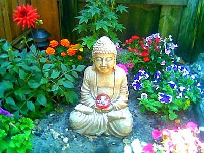 Poster featuring the photograph Backyard Buddha by Steed Edwards
