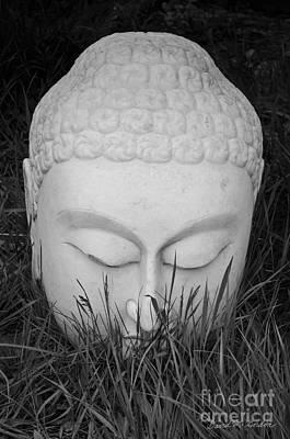 Buddha I Poster by Dave Gordon