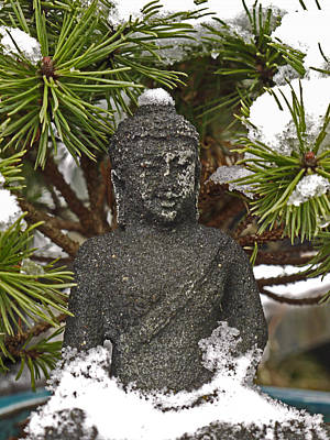 Buddha In The Snow Poster