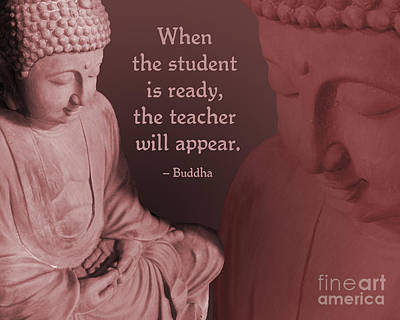 Buddha Student Is Ready Poster by Ginny Gaura