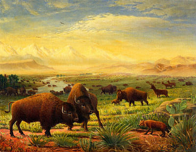 Buffalo Fox Great Plains Western Landscape Oil Painting - Bison - Americana - Historic - Walt Curlee Poster by Walt Curlee