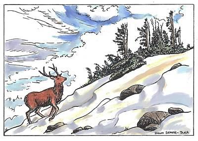 Bull Elk At Timberline Poster
