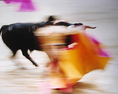 Bullfight  4 Poster
