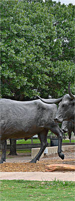 Bull Market Quadriptych 2 Of 4 Poster by Christine Till