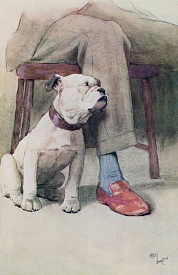 Bulldog Pen & Ink & Wash On Paper Poster by Cecil Charles Windsor Aldin
