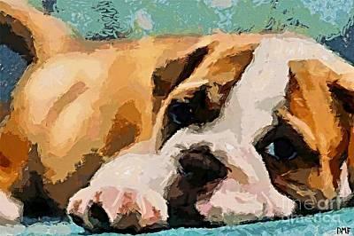 Bulldog Puppy Poster by Dragica  Micki Fortuna