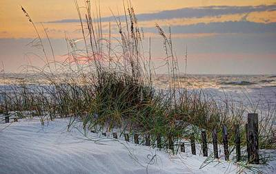 Buried Fence And Sea Oats Sunrise Poster by Michael Thomas