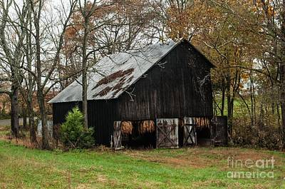 Poster featuring the photograph Burley Tobacco  Barn by Debbie Green