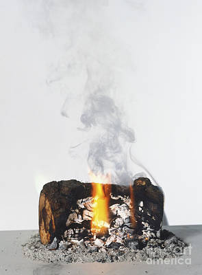 Burning Log Poster by Clive Streeter / Dorling Kindersley / Science Museum, London
