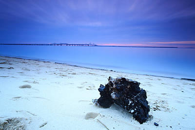 Poster featuring the photograph Burnt Driftwood Sunset by Jennifer Casey