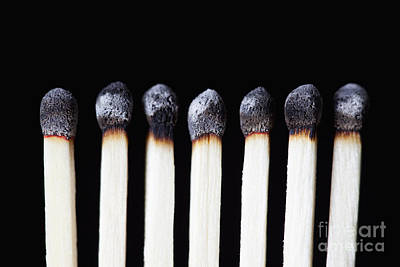 Burnt Matches On Black Poster