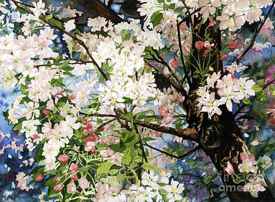 Burst Of Spring Poster by Barbara Jewell