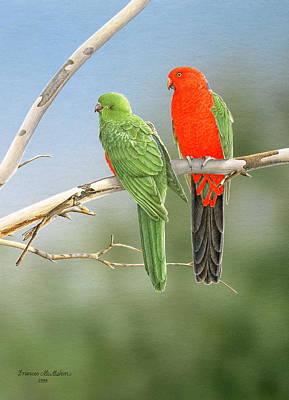 Bush Monarchs - King Parrots Poster by Frances McMahon