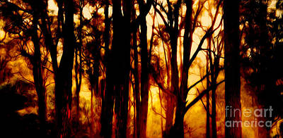 Bushfire Poster by Phill Petrovic