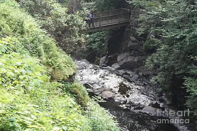 Bushkill Falls Stream Poster