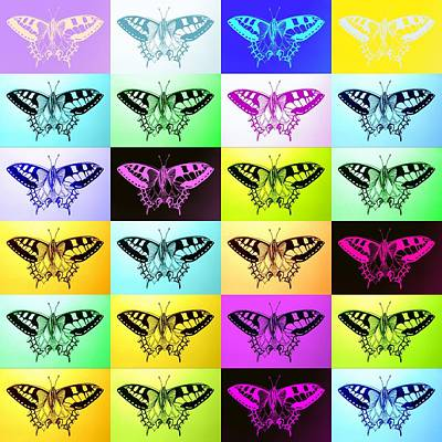 Butterflies Poster by Cathy Jacobs