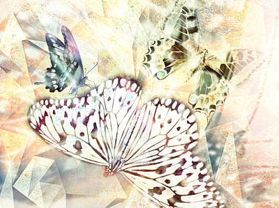 Butterflies Geometric 4 Poster