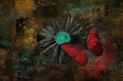 Butterfly And Daisy - 09at2b Poster by Variance Collections