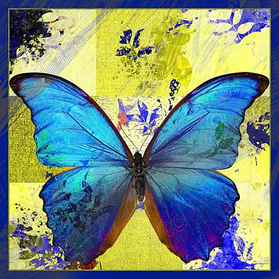 Butterfly Art - S14avbt01 Poster by Variance Collections