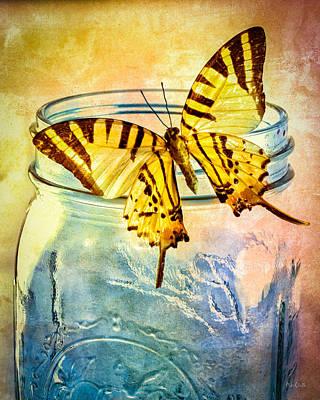 Butterfly Blue Glass Jar Poster by Bob Orsillo