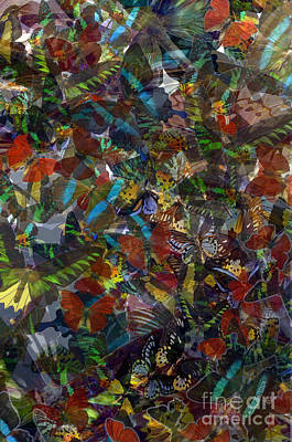Poster featuring the photograph Butterfly Collage by Robert Meanor