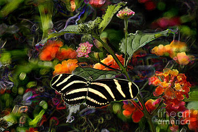 Poster featuring the digital art Butterfly Garden 14 - Zebra Heliconian by E B Schmidt