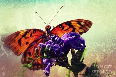 Butterfly Kissed Poster by Darla Wood
