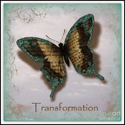 Butterfly Of Transformation Poster