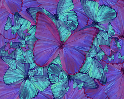 Butterfly Radial Violetmorpheus Poster