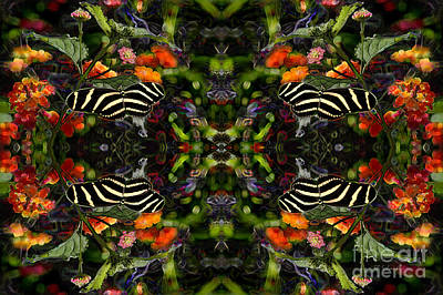 Poster featuring the digital art Butterfly Reflections 03 - Zebra Heliconian by E B Schmidt