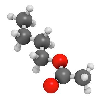 Butyl Acetate Molecule Poster by Molekuul