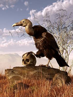 Buzzard With A Skull Poster