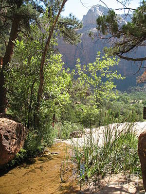 By The Emerald Pools - Zion Np Poster by Christiane Schulze Art And Photography