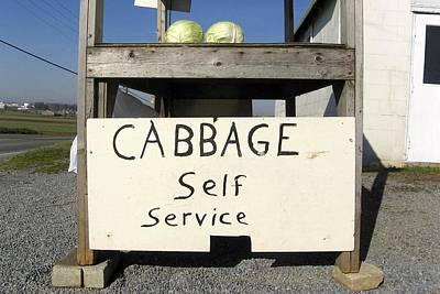 Cabbage Self Service Poster