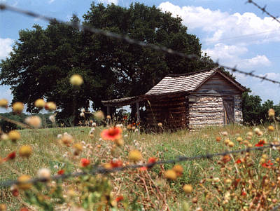 Cabin In The Wildflowers Poster by Glenn Aker