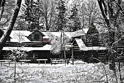 Poster featuring the photograph Cabin In The Woods by Deborah Klubertanz