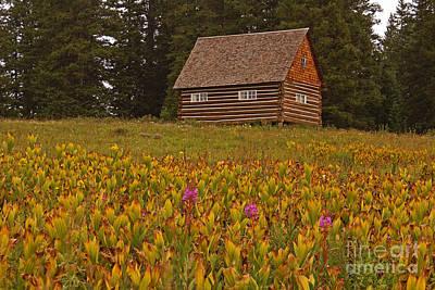 Cabin On Grand Mesa Poster