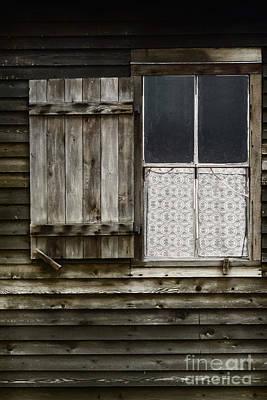 Cabin Window Poster by Margie Hurwich