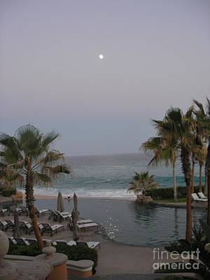 Cabo Moonlight Poster by Susan Garren