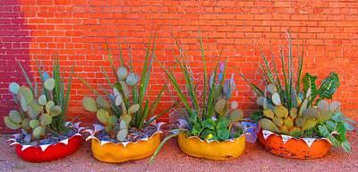 Cacti Quartet Poster by Alec Drake