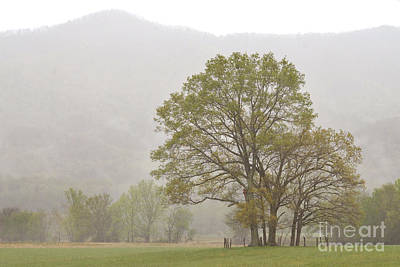 Cades Cove In The Great Smoky Mountains National Park Poster