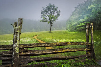 Cades Cove Misty Tree Poster by Debra and Dave Vanderlaan