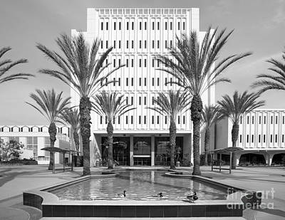 Cal State University Fullerton Langsdorf Hall Poster by University Icons