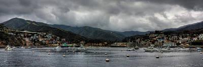 California - Catalina Island 010 Poster by Lance Vaughn