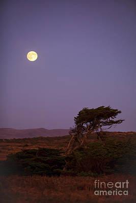 California Moon Poster