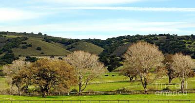 California Winter Landscape Poster