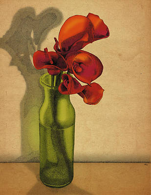 Poster featuring the drawing Calla Lilies In Bloom by Meg Shearer