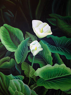 Calla Lily Poster by William Love