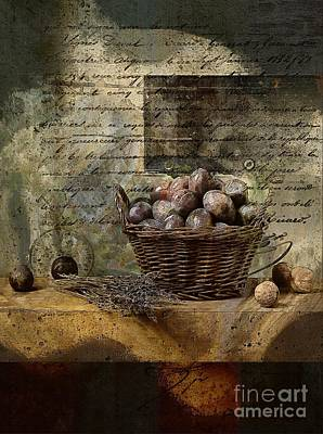 Campagnard - Rustic Still Life - S02sp Poster by Variance Collections